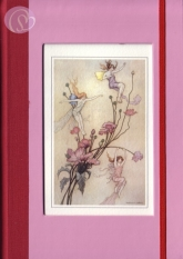 Notizbuch Fairies & Flowers