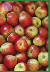 Klappkarte Apples